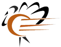 Thumb turkey trot logo