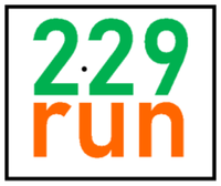 229 run - Somewhereville, FL - race75826-logo.bDnioy.png