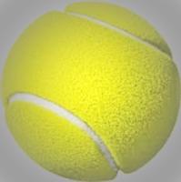Tennis - 18 + - Punta Gorda, FL - race88761-logo.bEzRIy.png