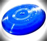 Doogie's Ultimate Frisbee 18 + - Englewood, FL - race88786-logo.bEz9cC.png