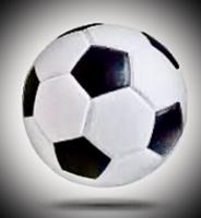 Doogie's Soccer 18 + - North Port, FL - race88794-logo.bEz_93.png