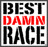 Best Damn Race New Orleans Virtual Race - Clearwater, FL - race89466-logo.bEE52U.png