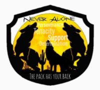 Virtual PTSD Awareness 5K Run/Walk - Peoria, AZ - race90115-logo.bEK3s2.png