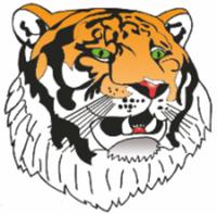 Tiger Virtual 5K Race - Fort Myers, FL - race91788-logo.bEVA9C.png