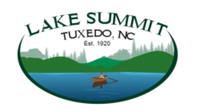Lake Summit 10 Mile - Zirconia, NC - race89321-logo.bFa3-w.png