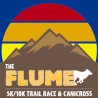 The Flume - Carrabassett Valley, ME - race94591-logo.bFa3uh.png
