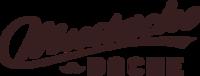 The Mustache Dache - America, WA - race96735-logo.bFnBg2.png