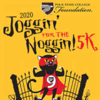 Joggin' For The Noggin! 5k (Virtual) - Lakeland, FL - race96965-logo.bFo_bJ.png
