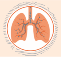 SeHealth Every Breath Counts COPD Virtual 5K Run & Walk-a-Thon - Lumberton, NC - race98498-logo.bFwnWw.png