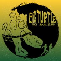 Big Turtle 50 Miler - 50K - 10 Miler - Morehea, KY - race99729-logo.bFzZzD.png