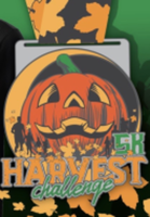 Building Men Virtual Harvest Challenge - Syracuse, NY - race100080-logo.bFA34i.png