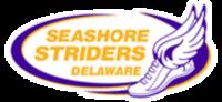 11th Seashore Classic VIRTUAL 1/2 Marathon & 5k - Any City, DE - race100155-logo.bFBiyp.png