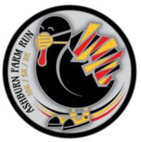 Ashburn Farm Thanksgiving Day Races - Ashburn, VA - race100190-logo.bFBprq.png