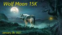 WOLF MOON 15K - Allison Park, PA - race101585-logo.bFH2Ju.png