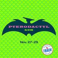 Pterodactyl 42k Marathon (virtual) - Seattle, WA - VTC-2020-Pterodactyl-instagram-post.jpg
