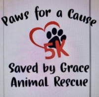 Paws for a Cause 5K - Newton, IL - race102047-logo.bFKV9w.png
