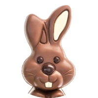 Chocolate Bunny 5K - Tempe, AZ - 605ad2cd-fb86-4913-84ef-c9539b0b821b.jpg