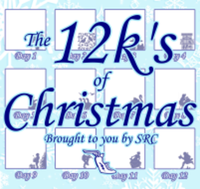 The 12k's of Christmas - Sayville, NY - race101829-logo.bFJE_s.png