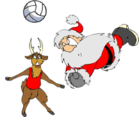 Team Doogie's Holiday Volleyball Tournament - North Port, FL - race102776-logo.bFPIvP.png
