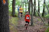 Trip 'n' Tumble 10K and 13M trail races - Flintstone, MD - race103597-logo.bFWwFF.png
