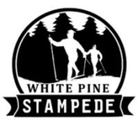 Virtual White Pine Stampede - Mancelona, MI - race103015-logo.bFRuKF.png