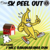 Pleasant Valley Lions Club 5K Peel Out - Camarillo, CA - race11944-logo.bt9qMP.png