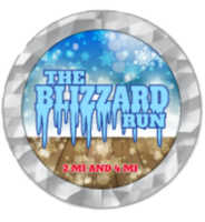 The Blizzard Run - Long Beach, NY - race104833-logo.bF_ChV.png