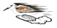 Solana Pacific Sandpiper Sprint - San Diego, CA - race105728-logo.bGdZt9.png