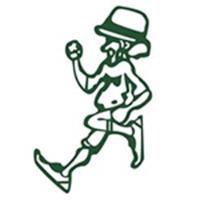 Shamrock Run - Kingston, NY - race105982-logo.bGegn_.png
