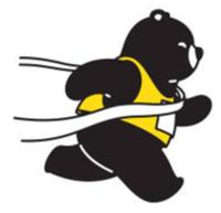 Swing Into Spring Virtual Fun Run - Anywhere, NJ - race105505-logo.bGeUsj.png