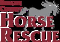 Run For The Horses  10K, 5K, 1 Mile (Fun Run) - Virtual 2021 - Mahwah, NJ - race101294-logo.bGeR9w.png