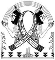 HOPI Cancer Awareness Virtual 2 Mile 5K, 8K  Run/Walk - Kykotsmovi Village, AZ - race106347-logo.bGjE7t.png