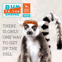Run to the Shrine - Colorado Springs, CO - 2021RTTS-CAL.png