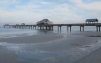 Clearwater Beach Bum - Land O' Lakes, FL - race58767-logo.bCTmov.png