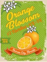 Orange Blossom Half Marathon-10K-5K - Haines City, FL - race25926-logo.bBiPtC.png