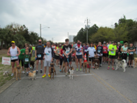 18th Annual Run with the Dogs 5k - Destin, FL - race6025-logo.bx8RtC.png