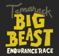The Big Beast 2021 Summer Endurance Race - Colden, NY - race110027-logo.bGAh86.png