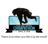Chimpathon 16K - Fort Pierce, FL - race41488-logo.bAA19R.png