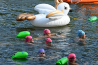 2021 Open Water Series & Summer Virtual Tri Series - Norristown, PA - race110259-logo.bGB1w0.png