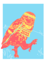 Owl by Yourself Virtual Run - Tacoma, WA - race109315-logo.bGD7hZ.png