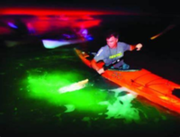 Full Moon Glow Paddle - Coronado, CA - race110943-logo.bGFU6I.png
